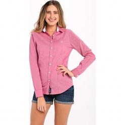 Koszula w kolorze różowo-białym. Białe koszule damskie marki Jimmy Sanders, l, w paski, z klasycznym kołnierzykiem. W wyprzedaży za 82,95 zł.