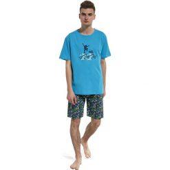 Chłopięca piżama Skate. Szare bielizna chłopięca Astratex, m, z bawełny, z krótkim rękawem. Za 69,99 zł.