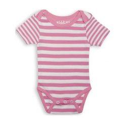 Body Sachet Pink Stripe 3-6m. Różowe body niemowlęce Juddlies. Za 28,27 zł.