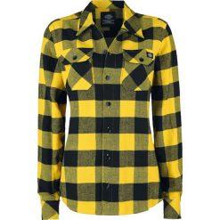 Dickies Sacramento Bluzka damska czarny/żółty. Szare bluzki longsleeves marki Dickies, na zimę, z dzianiny. Za 199,90 zł.