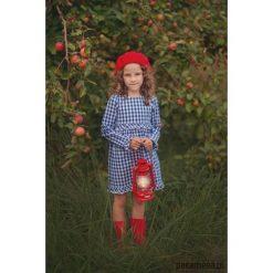 Sukienka CORNFLOWER. Niebieskie sukienki dziewczęce z falbanami Pakamera, z bawełny. Za 169,00 zł.