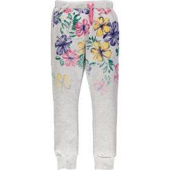 Spodnie dresowe dziewczęce: Mek – Dres dziecięcy 122-170 cm