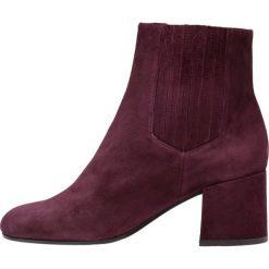 Botki damskie lity: Bruno Premi Ankle boot bordeaux