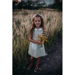 Sukienka Sunflower. Czarne sukienki dziewczęce letnie Pakamera. Za 119,00 zł.