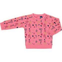 Bluza w kolorze różowym. Czerwone bluzy dziewczęce rozpinane marki Street Monkey, z bawełny. W wyprzedaży za 49,95 zł.