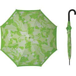 Parasole: Parasol w kolorze zielonym