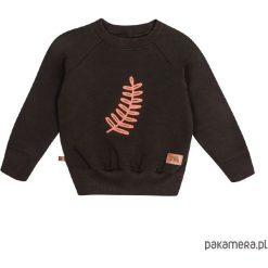 Odzież chłopięca: Bluza flora 05