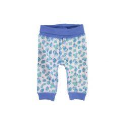 NAME IT Boys Spodnie dla wcześniaka NITWANT regatta. Szare spodnie niemowlęce Name it, z bawełny. Za 39,80 zł.