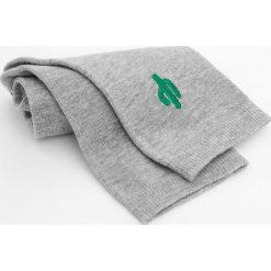 Skarpetki z haftowanym kaktusem. Zielone skarpetki damskie marki Pull&Bear. Za 19,90 zł.