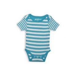 Body Blue Stripe 3-6m. Niebieskie body niemowlęce Juddlies. Za 28,27 zł.