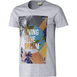 Adidas T-shirt B89613. Szare t-shirty męskie Adidas, m, z bawełny. W wyprzedaży za 69,99 zł.