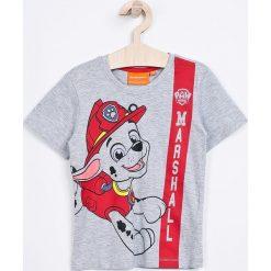 T-shirty chłopięce z nadrukiem: Blukids – T-shirt dziecięcy Paw Patrol 98-128 cm