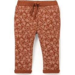 Spodnie dresowe z moltonu w sówki, 1 mies. - 3 lata, Oeko Tex. Brązowe spodnie dresowe dziewczęce La Redoute Collections, z bawełny. Za 60,44 zł.