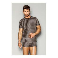 T-shirty męskie: Esotiq & henderson Koszulka Wide 32449-88X brązowe paski r. XXL