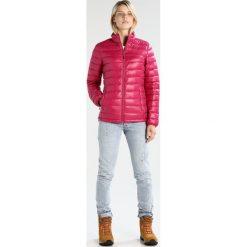 Icepeak VIRPA Kurtka puchowa cranberry. Różowe kurtki damskie puchowe marki Icepeak, z materiału. W wyprzedaży za 251,30 zł.