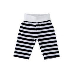 STEIFF Baby Nicki Spodnie jogging paski marine. Szare spodnie chłopięce marki Steiff, w paski, z bawełny. Za 99,00 zł.