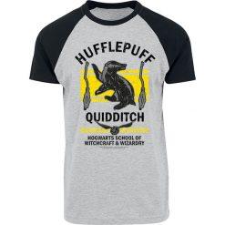 T-shirty męskie z nadrukiem: Harry Potter Hufflepuff Quidditch T-Shirt szary/czarny
