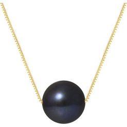 Naszyjniki damskie: Złoty naszyjnik z perłą słodkowodną – dł. 42 cm