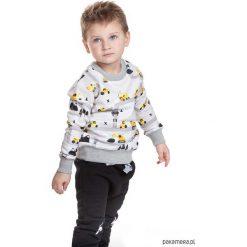 Bluzy chłopięce: Bluza Koparki Pocopato