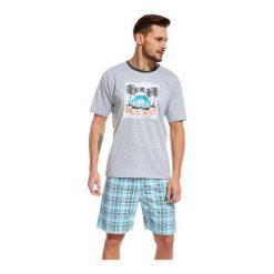 Piżamy męskie: Piżama Malibu 326/46