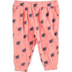 Spodnie niemowlęce: Spodnie w kolorze pomarańczowym
