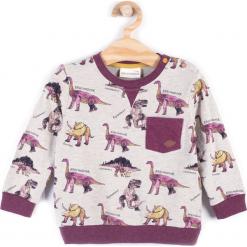 Koszulka. Brązowe t-shirty chłopięce z długim rękawem STEGOSAURUS, z bawełny. Za 34,90 zł.