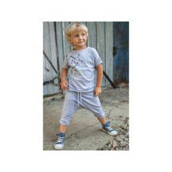 Spodnie niemowlęce: SPODENKI LUKA SZARE