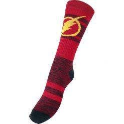 The Flash Logo Skarpetki czerwony. Czerwone skarpetki męskie The Flash. Za 42,90 zł.