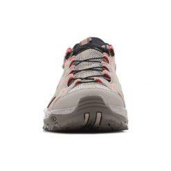 Sandały Salomon  Techamphibian 3 W 393462. Szare sandały męskie marki Salomon, z gore-texu, na sznurówki, outdoorowe, gore-tex. Za 317,10 zł.