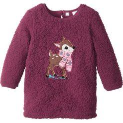 Sukienki dziewczęce: Ciepła sukienka z pluszu bonprix jeżynowy Bambi