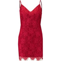 Sukienki: Missguided V NECK  Sukienka etui burgundy
