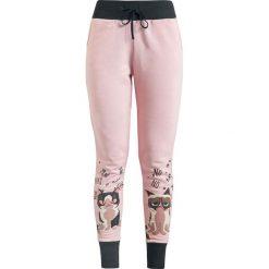 Grumpy Cat No Miau Spodnie dresowe damskie ciemnoróżowy. Czerwone spodnie dresowe damskie Grumpy Cat, xl, z nadrukiem, z dresówki. Za 164,90 zł.