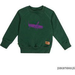Bluzy chłopięce rozpinane: bluza - konik polny