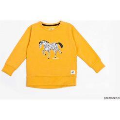Bluzy chłopięce: Bluza Musztardowa Konik