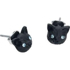 Wildcat Behind Blue Eyes Kolczyki - Earpin czarny. Czarne kolczyki damskie Wildcat, metalowe. Za 32,90 zł.