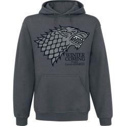 Bluzy męskie: Gra o Tron House Stark - Winter Is Coming Bluza z kapturem szary
