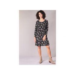 Sukienki: Sukienki krótkie Betty London  JAFLORI