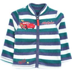 Zielona Bluza Learn Today. Zielone bluzy niemowlęce marki Born2be, na jesień. Za 44,99 zł.