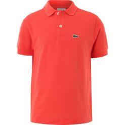 T-shirty chłopięce: Lacoste PJ290900 Koszulka polo watermelon