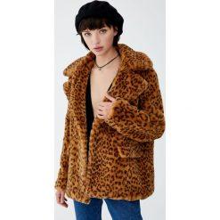 Kurtka ze sztucznego futra w panterkę. Różowe kurtki damskie Pull&Bear, z motywem zwierzęcym. Za 199,00 zł.