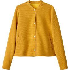 Bluzy rozpinane damskie: Bluza z dzianiny