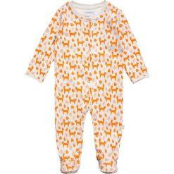Bielizna chłopięca: JoJo Maman Bébé FOX SLEEPSUIT BABY Piżama ecru