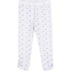 Spodnie dziewczęce: Coccodrillo – Legginsy dziecięce 92-122 cm