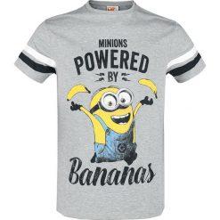 Minions Powered by Bananas T-Shirt odcienie szarego. Szare t-shirty męskie z nadrukiem Minions, l, z okrągłym kołnierzem. Za 62,90 zł.