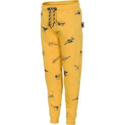 Spodnie dresowe dla małych chłopców JSPMD103 - ŻÓŁTY. Żółte spodnie chłopięce marki 4F JUNIOR, z bawełny. Za 39,99 zł.