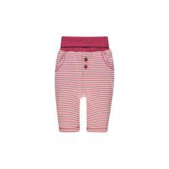 Steiff Spodnie Jogging vivacious. Różowe spodnie chłopięce marki Steiff, z aplikacjami, z bawełny. Za 89,00 zł.