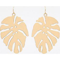 Kolczyki damskie: Kolczyki liście – Złoty
