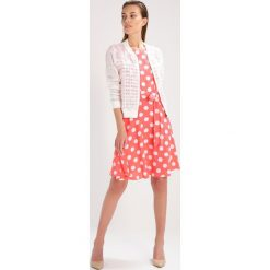 Sukienki: Wallis SPOT  Sukienka letnia coral