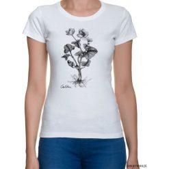 Bluzki, topy, tuniki: Kaczeniec- t-shirt – różne kolory