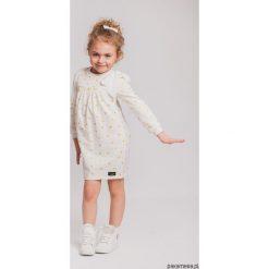 Sukienki dziewczęce z falbanami: Kremowa sukienka dresowa z kokardą